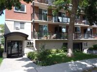 LARGE RENOVATED 2 BEDROOM - DOWNTOWN - FEB 1ST - BOLTON
