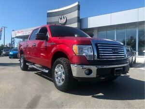 2010 Ford F-150 4.6L V8, Crew Cab, Langley