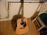 Boston acustic guitar