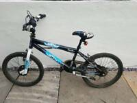 Rarely used Flite Punisher Kids Freestyle Bike : Bargain: £80