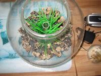 biorb fish tank excellent condition