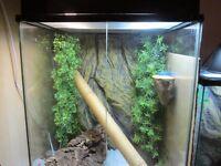 lucky reptile white swing door terrarium vivarium 60x50x60,with exo terra dome