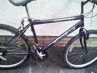 EMMELLE,MENS MOUNTAIN BIKE,19 INCH FRAME,26 INCH WHEELS,18 GEARS,GOOD TYRES,GEL SEAT,GOOD CONDITION.
