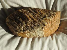 Fossilised Mammoth's tooth