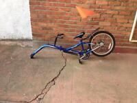 Child's trailer bike