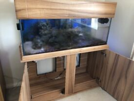 large fish tank for sale comes with all little fish tank items this is with a wooden cupboard