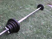 44 lb 20 kg Metal Barbell Dumbbell Weights with Spinlock Bar - Heathrow