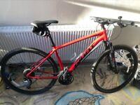 GIANT Hybrid Bike (Fully Serviced, Like New)