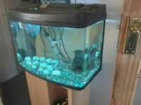 64 ltr Fish tank and cabinet