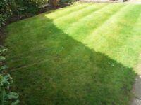 Full garden maintaince