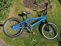 Blue Mongoose pump track bike.