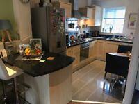 Fitted kitchen - cabinets, doors, worktop, splashback, sink, tap, hood, shelves, lights