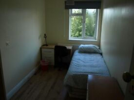 2 single rooms willesden area