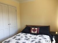 Double room for rent in FAMILY home