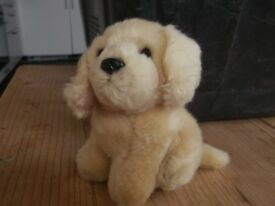 little puppy golden soft toy