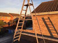 10 Tread alluminum step ladder