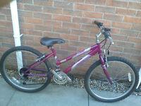 Girls Raleigh Kobo Mountain Bike Bicycle