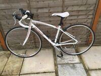 Ladies Specialized Dolce road bike 42 cm