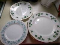 Plates and half plate 13 pices