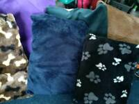 6 dog beds all new