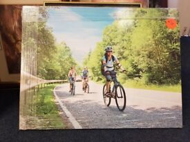 Large picture, bycicle riding, on wood, heavy, shop clearance item