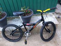 "BOYS CHILDREN KIDS PROBIKE TRECKER 20"" WHEELS AGES 4 _9 BIKE BICYCLE"