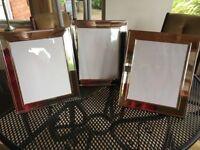 Set of 3 large silvered photograph frames