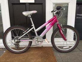 "Girls Raleigh bike 20"" wheels and gears"