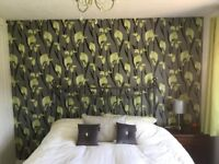 Unopened Wallpaper - Feature Wall for £5