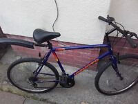 Bike/bicycle