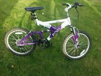 Boy's /Girls Bike