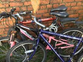 Three old bikes for sale