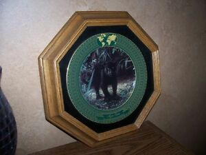 Collectible Plates & Frames - Wild Cats London Ontario image 2