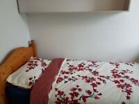 A lovely & cosy single room in a clean house to let in Oxford