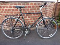 TREK hybrid bike - mens