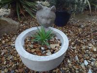 Concrete (reconstituted stone) Cat Garden Planter – Garden Ornament/Indoor Use