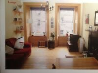 Beautiful One Bedroom Flat for long term rent - Newington, Edinburgh. Professional or PHD student