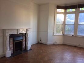 Newly Renovated 2 Bedroom Victorian Flat with Parking