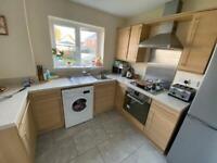 Whole Kitchen + Appliances