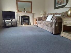 Lovely Blue/Grey Carpet