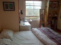 Friendly houseshare in Islington N1. Double room in Victorian house