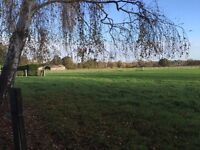 Private Secluded Yard with 5 Acres of Horse Paddocks & 5 Stables
