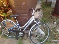Hybrid bike, ladies Claude Butler