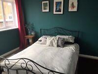 Double room - understanding landlady - cats