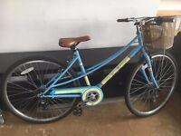 Comfy womens bike with handy basket