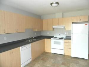 2 Bedroom with in-suite  Laundry Close to Walmart & Totem Mall