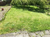 Help Wanted - someone for weeding, tidying, grass cutting, etc.