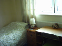 Lovely Large Twin room available for short lets between 11/8-11/9 or after 28/9