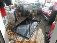 2 DOOR EXTRA EXTRA LARGE DOG CAGE