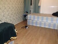 Bed to let in roomshare with brasil boy in flatshare at Betnal green & Stepney Green